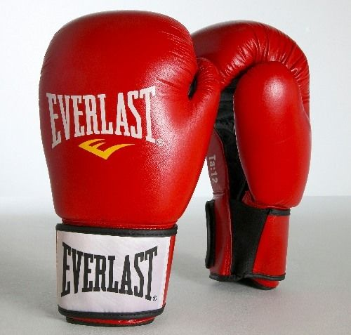 "Everlast ""Ergo"" Trainingshandschuhe, Leder"